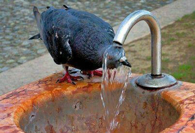 گرمای رامهرمز خوزستان